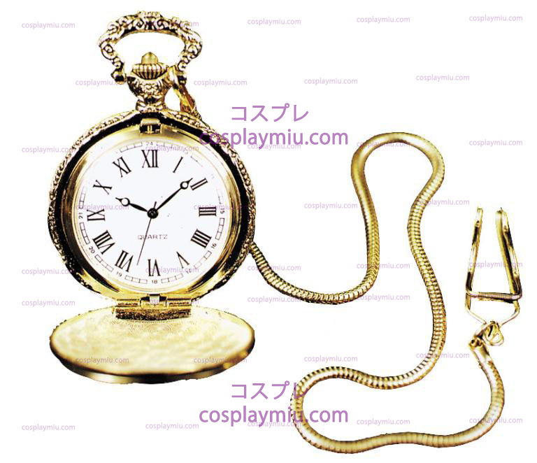 Pocket Watch Case w / Chain